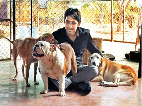 Roshan Poduval taking care of pets at the Peppy Paws Resort