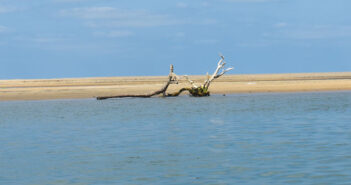 Pulicat: A lagoon, monuments and the Dutch connection