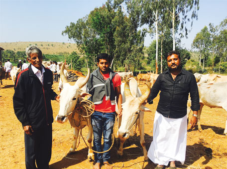 Madhuchandan (right) with desi cattle